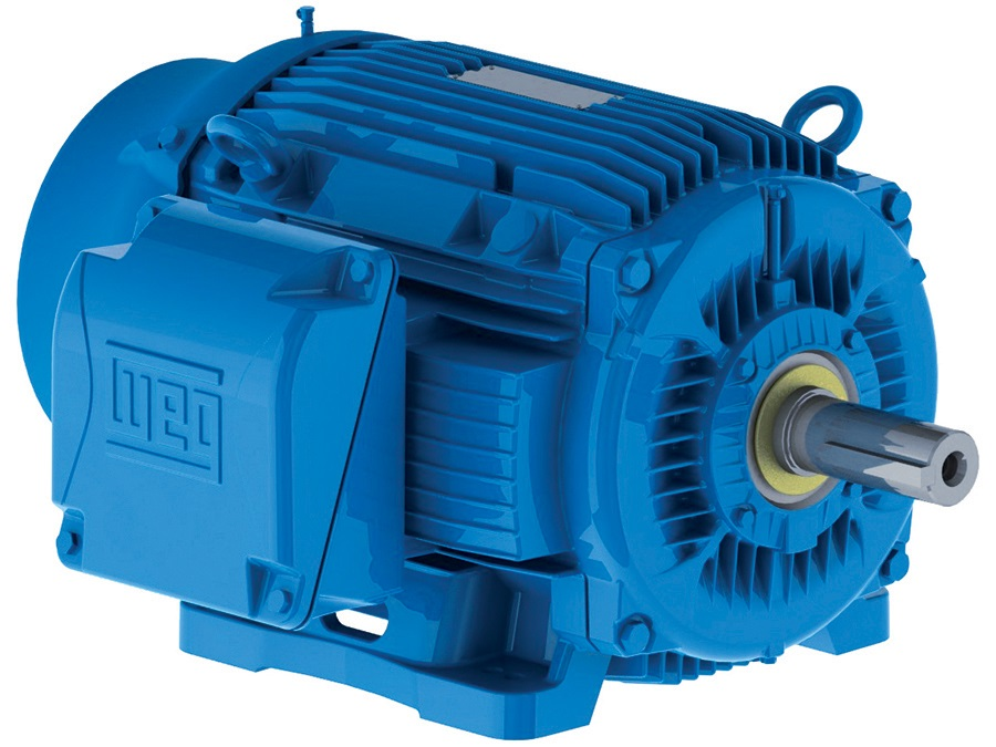 WEG AC Motor